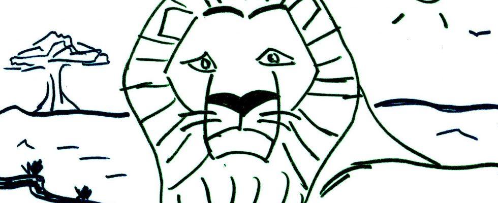 Coloriage Animaux Afrique Maternelle.Coloriage Pour Maternelle Lion D Afrique Afrocaneo