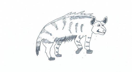 coloriage hyene