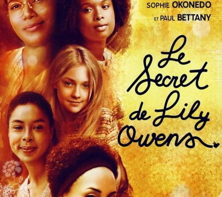"""Affiche du film """"Le Secret de Lily Owens"""""""