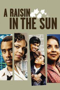"""Affiche du film """"Un Raisin au soleil"""""""