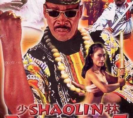 "Affiche du film ""Shaolin Dolemite"""